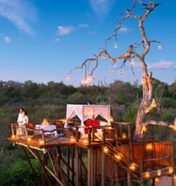 Honey Moon Safaris Tanzania