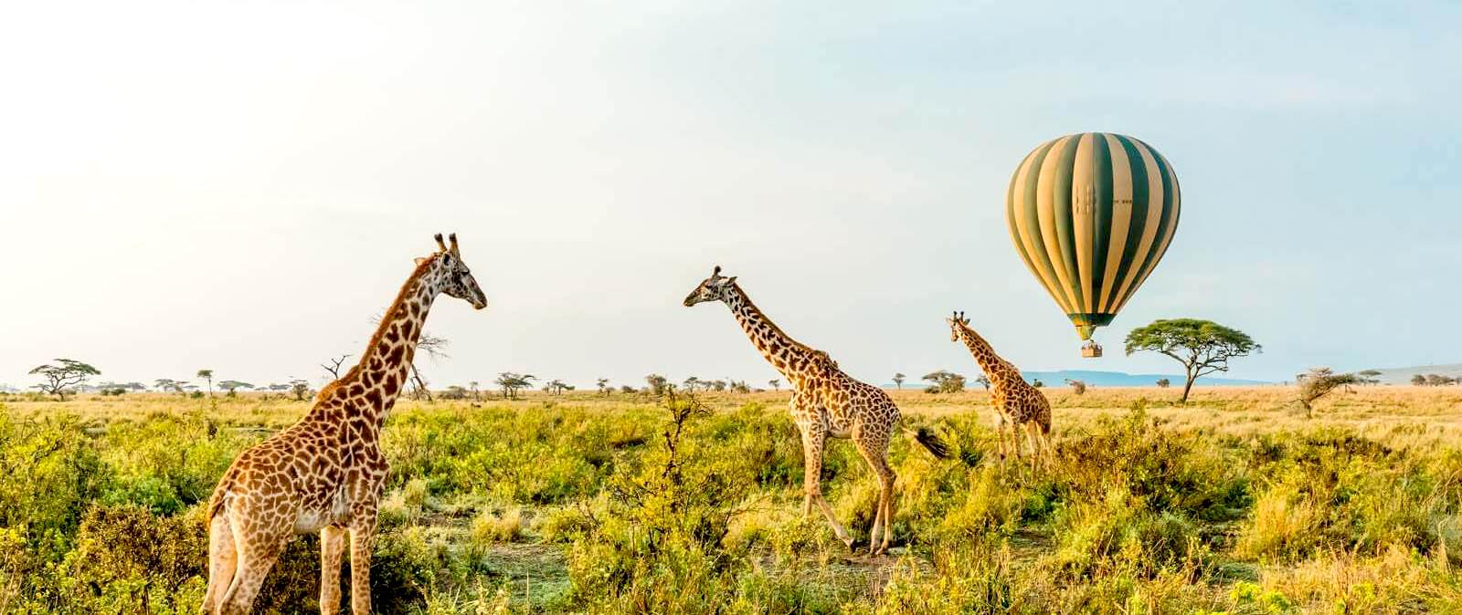 Hot air balloon Safari Tanzania