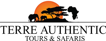LOGO-terre-authentic-tours-safaris-tanzanie