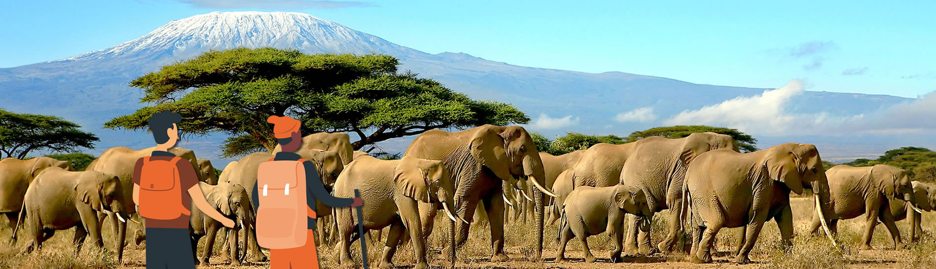 terre-authentic-safaris-tours-tanzania-guided-tours-2_r1_c1